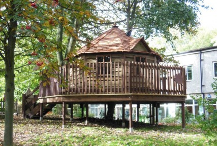treehouses for schools